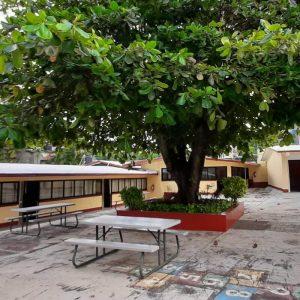 patio 11